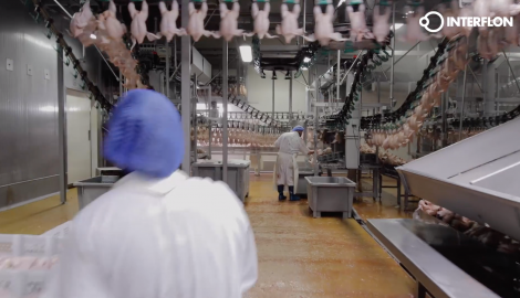 Poultry video